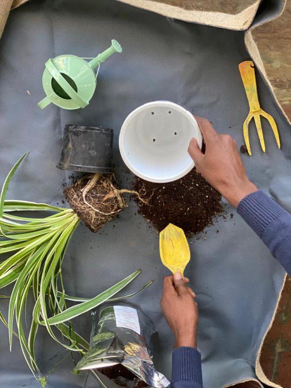 Indoor gardening mat