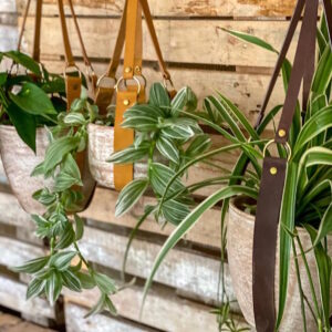 Plant Slings
