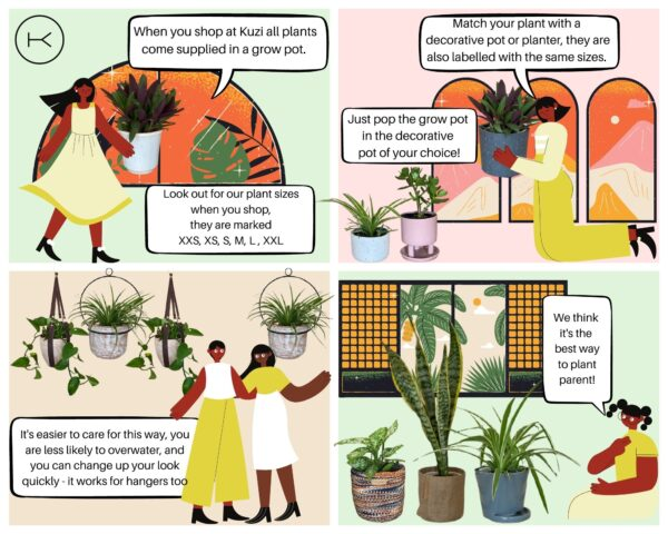 A infographic detailing how the Kuzi plant and pot concept works.